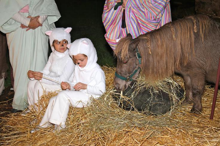 st-teresas-december-23-2011